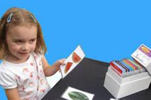 Inekards flash cards as recommended by Aspire Early Intervention